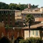 Siena - gotyk i Palio delle contrade - Podróże ze smakiem
